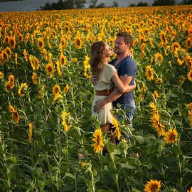 Sunflower Lovers by Yuri Lev