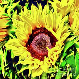 Sunflower Power by Jerome Stumphauzer