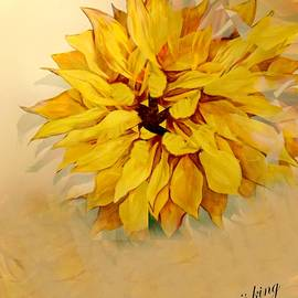 Sunflower Softly by Jacquie King