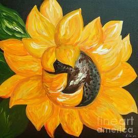 Eloise Schneider Mote - Sunflower Solo