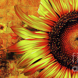 Sunflowers Abstract  by Gull G