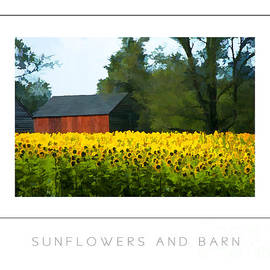 Mike Nellums - Sunflowers and Barn poster