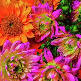 Sunflowers And Dahlias - Garry Gay