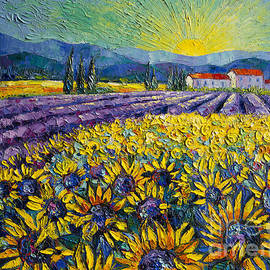 Mona Edulesco - Sunflowers And Lavender Field - The Colors Of Provence