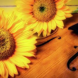 Sunflowers And Old Violin - Garry Gay