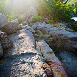 Sunlight On Cove Point by Alex Blondeau
