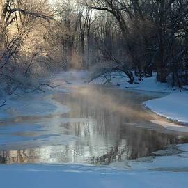Kathy Carlson - Sunlit Creek