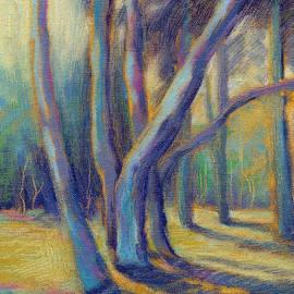 Sunlit Eucalyptus by Konnie Kim