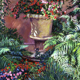 David Lloyd Glover - Sunlit Impatiens