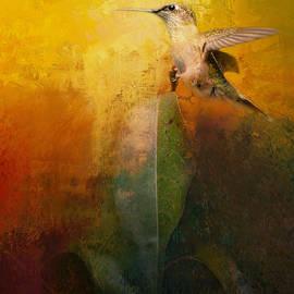 Jai Johnson - Sunlit Landing