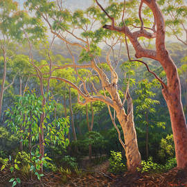 Fiona Craig - Sunlit Morning - Blue Mountains