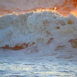 Dianne Cowen - Sunlit Surf
