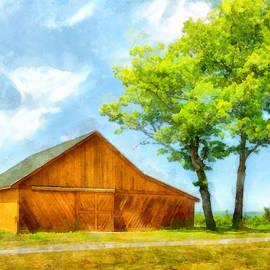 Betty Denise - Sunny Barn and Trees