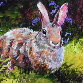 Sunny Bunny #2 - Tracie Thompson