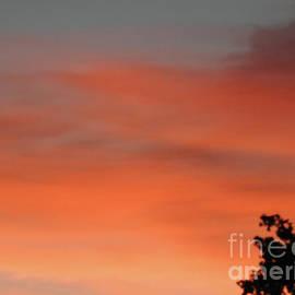Ruth Housley - Sunrise 2