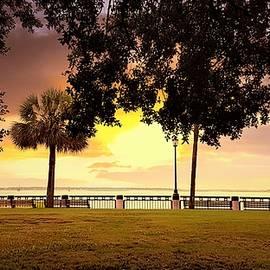 Nadia Seme - Sunrise at Charleston Waterfront Park