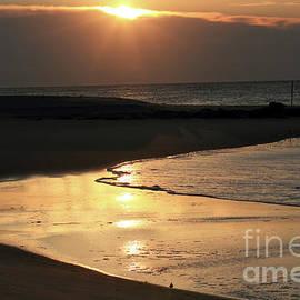 Sunrise at the beach Cape May New Jersey by John Van Decker