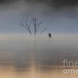 John Franke - Sunrise Fog Over Water