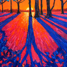 Ana Maria Edulescu - Sunrise In Glory - Long Shadows Of Trees At Dawn