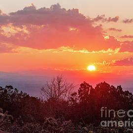 Sunrise July 18 by Steven Natanson