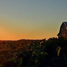 Chris Berry - Sunrise on the Farm