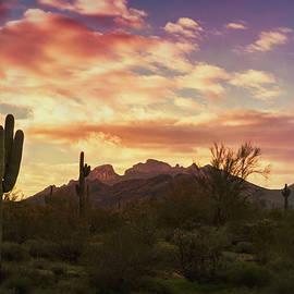 Saija Lehtonen - Sunrise on the Sonoran Horizon