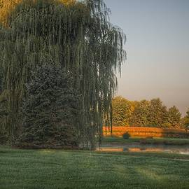 2406 - Sunrise On Willow Pond II by Sheryl Sutter