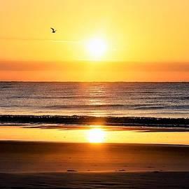 Sunrise over Hilton Head by Mary Ann Artz