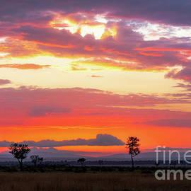 Jane Rix - Sunrise over the Mara