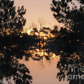 Thomas Carroll - Sunrise at Palmetto Bluff SC