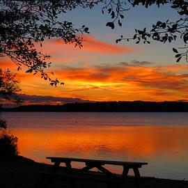 Sunrise Picnic  by Dianne Cowen