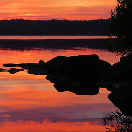 Sunrise Silhouettes  by Dianne Cowen