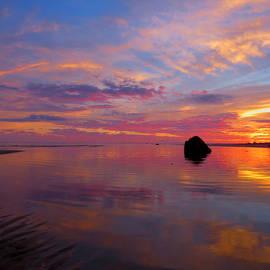 Dianne Cowen - Sunrise Silk