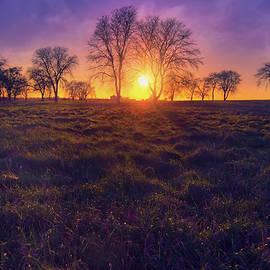 Jennifer Rondinelli Reilly - Fine Art Photography - Sunset at Aztalan State Park  #3