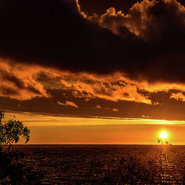 Onyonet  Photo Studios - Sunset At Bay Harbor