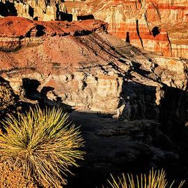 Priscilla Burgers - Sunset at Coal Mine Canyon