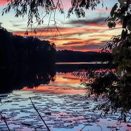 Sunset At Heron Lake by Wes Iversen