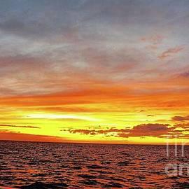 Sherri Hubby - Sunset at Sea
