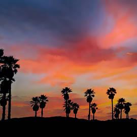 David Millenheft - Sunset Beach