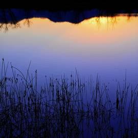 Flying Z Photography By Zayne Diamond - Sunset Blue, Walden Ponds Wildlife Habitat