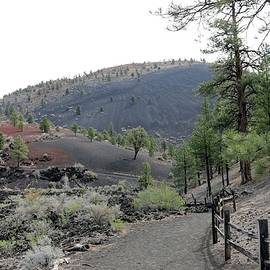 Sunset Crater Volcano National Monument - 5 by Christy Pooschke