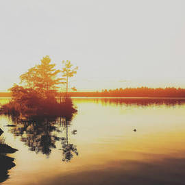Elizabeth Regan - Sunset Horizon
