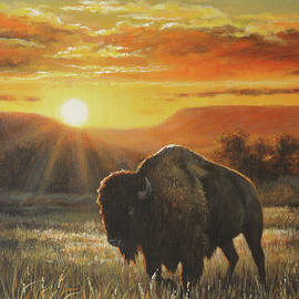 Sunset In Bison Country by Kim Lockman