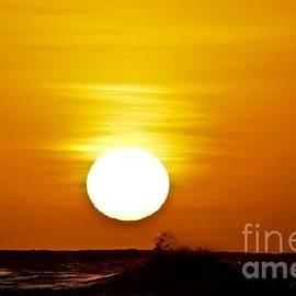 Sunset Kissed by Debra Banks