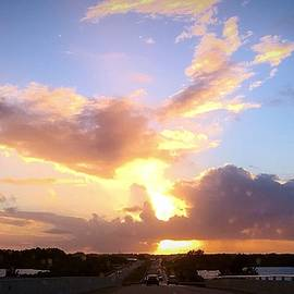 Sunset Merritt Island Florida by Anne Sands