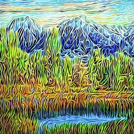 Joel Bruce Wallach - Sunset Mountain Reverie