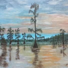 Judy Jones - Sunset on Henderson Swamp