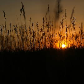 Sunset on the plains by Jeff Swan
