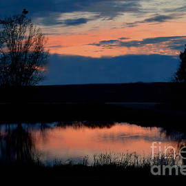 Kathy M Krause - Sunset On Willow Pond