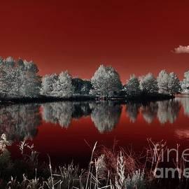 Sunset over the Creve Coeur lake by Igor Aleynikov